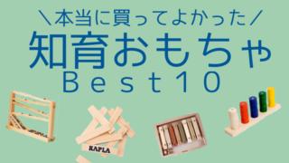 【1歳】【2歳】【3歳】プレゼントにもおすすめ!本当に買ってよかった知育玩具BEST10